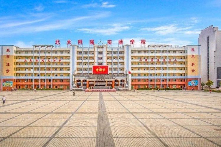 喜讯!湛江北附229人在全国青少年冰心文学大赛初赛获奖!